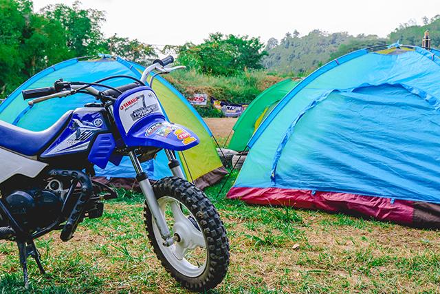 Camp and Trail (per head rate)